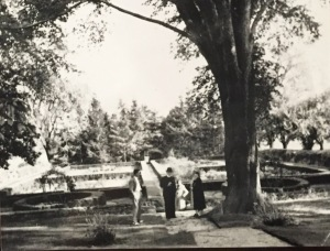 Our archived photos, such as this one, helped to inspire our plans for the new gardens.